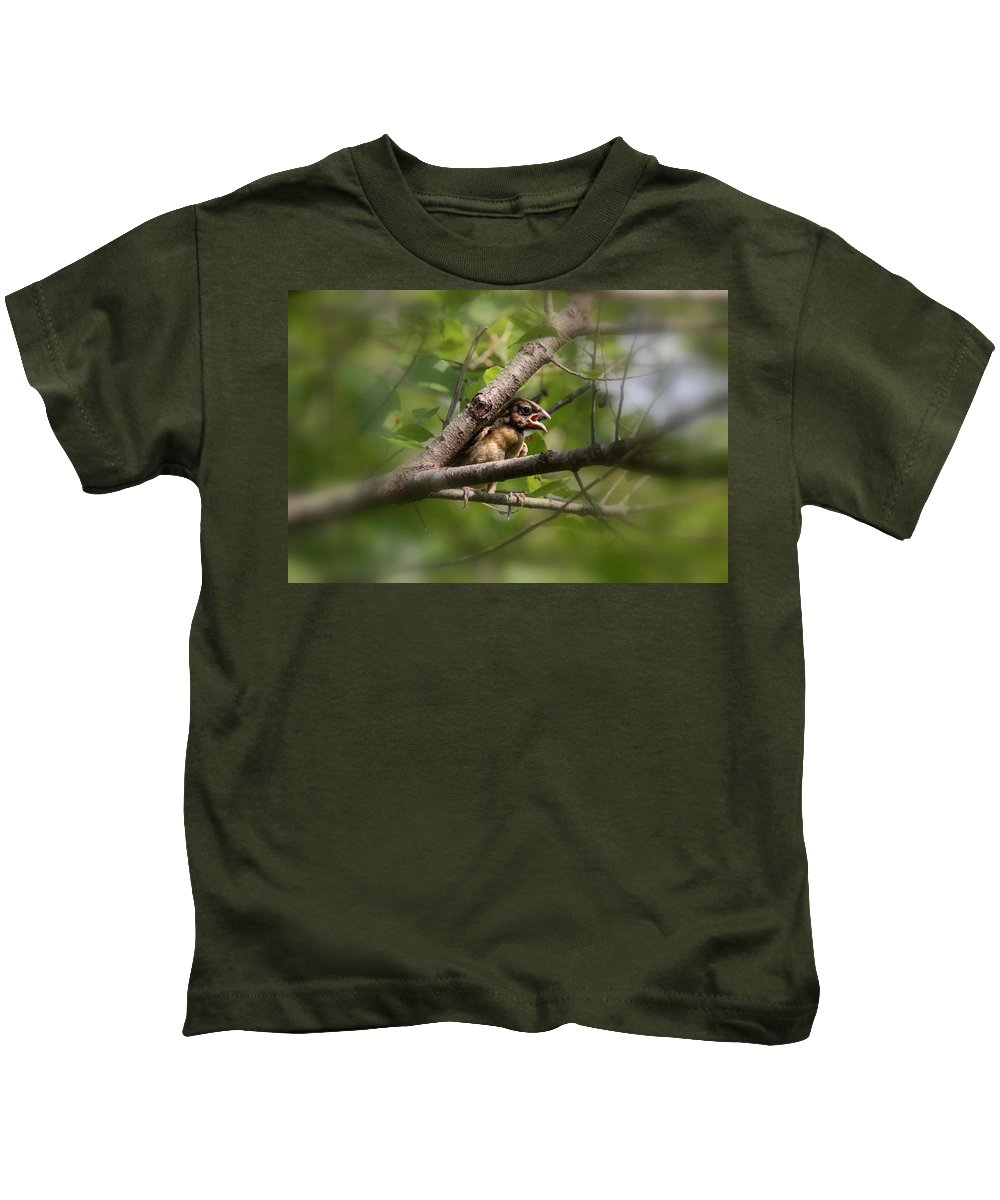 Blue Grosbeak Kids T-Shirt featuring the photograph Young And Scared by Travis Truelove