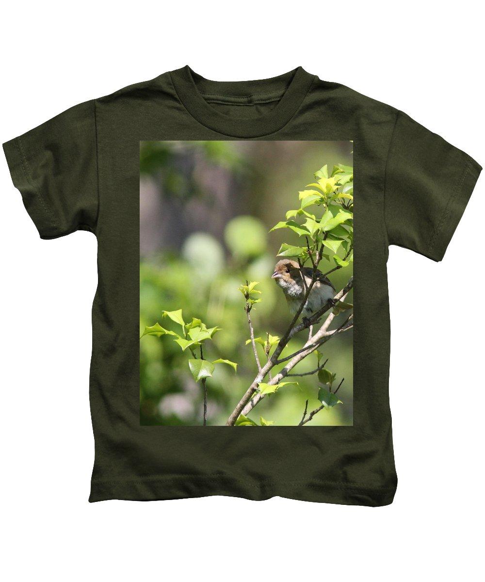 Blue Grosbeak Kids T-Shirt featuring the photograph Young Blue Grosbeak by Travis Truelove