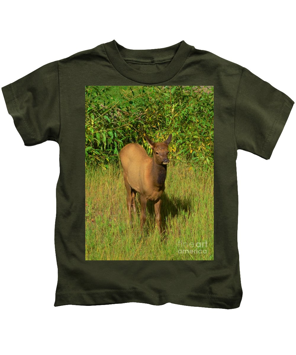 Young Kids T-Shirt featuring the photograph Young Elk by Kathleen Struckle