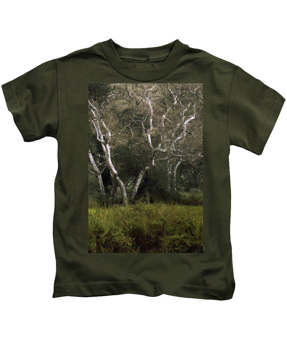 Tree Kids T-Shirt featuring the photograph Dv Creek Trees by Karen W Meyer