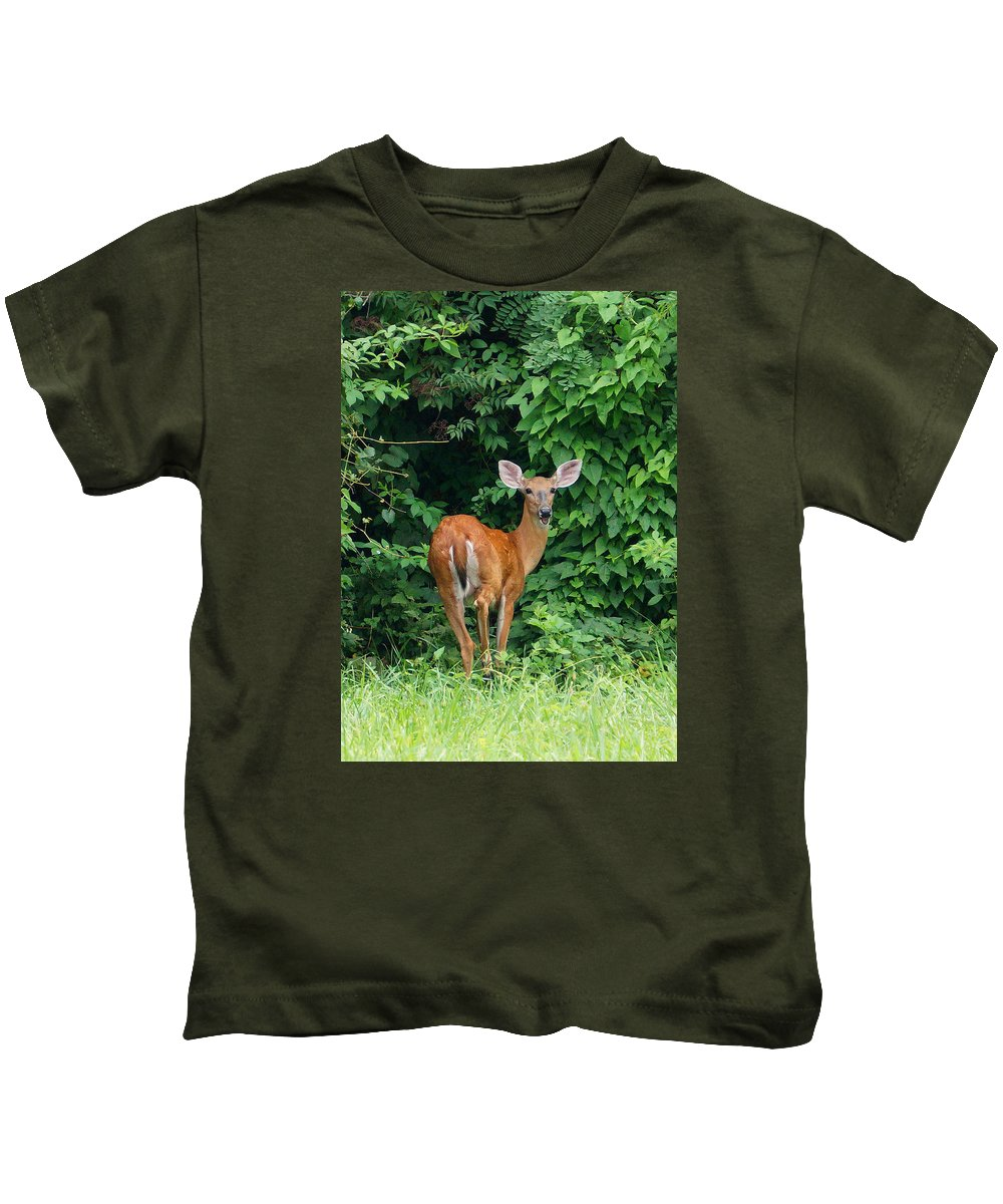 Ann Keisling Kids T-Shirt featuring the photograph Backyard Deer by Ann Keisling