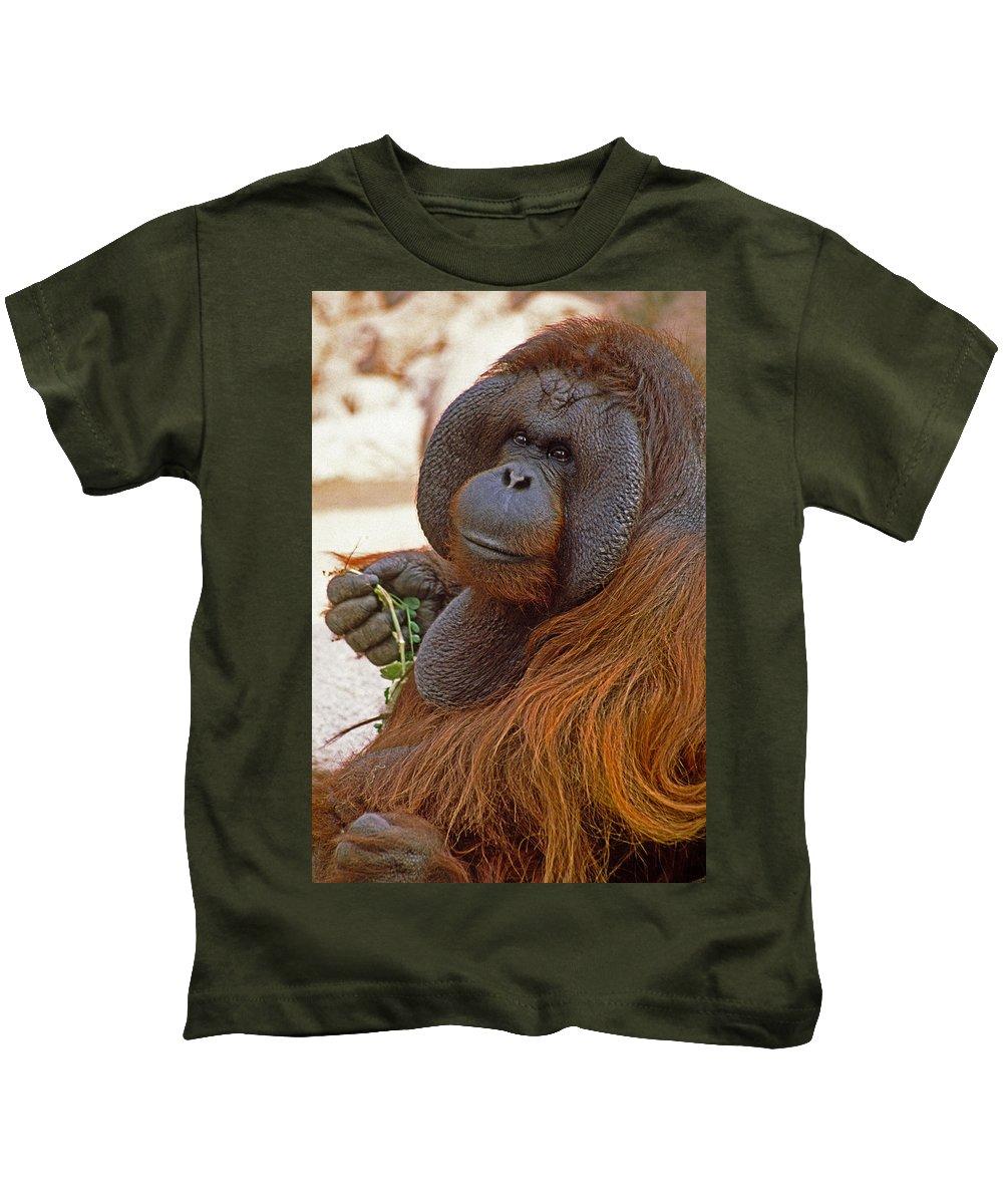 Orangutan Kids T-Shirt featuring the photograph Big Daddy by Michele Burgess