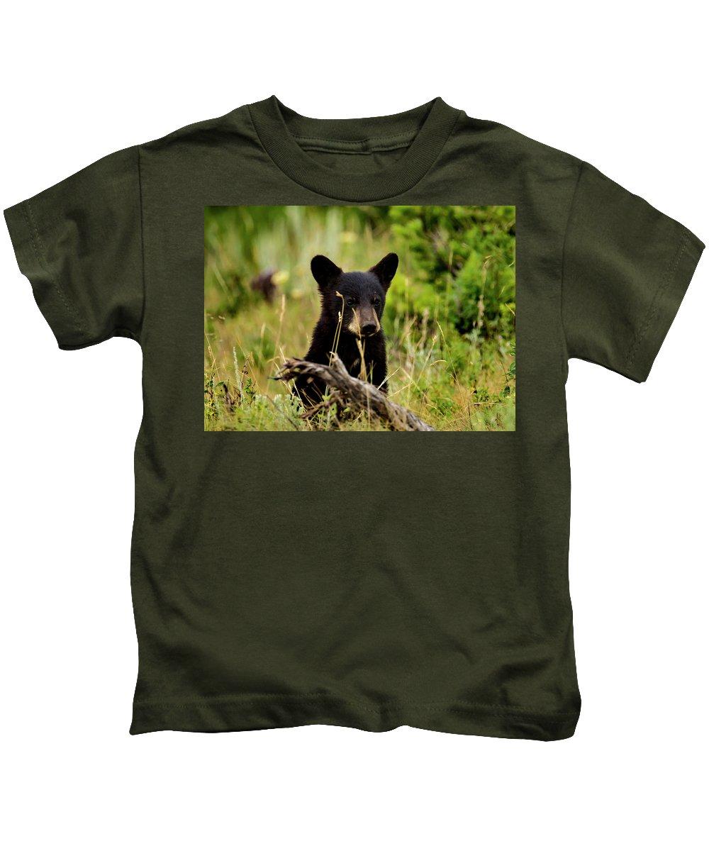 Kids T-Shirt featuring the photograph Black Bear Cub by Sheryl Saxton