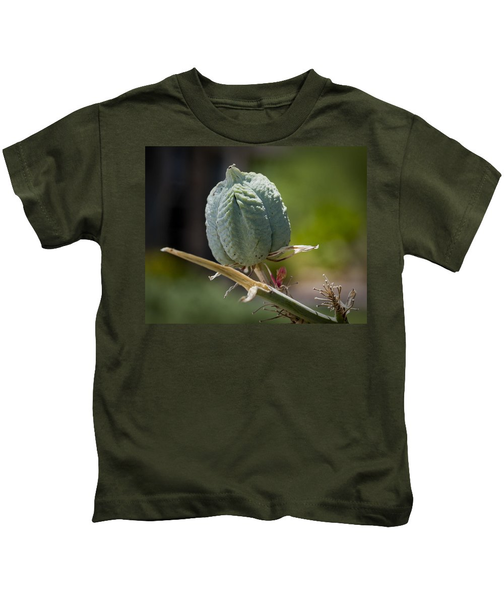 Seed Pods Kids T-Shirt featuring the photograph Desert Seed Pod 1 by Kelley King