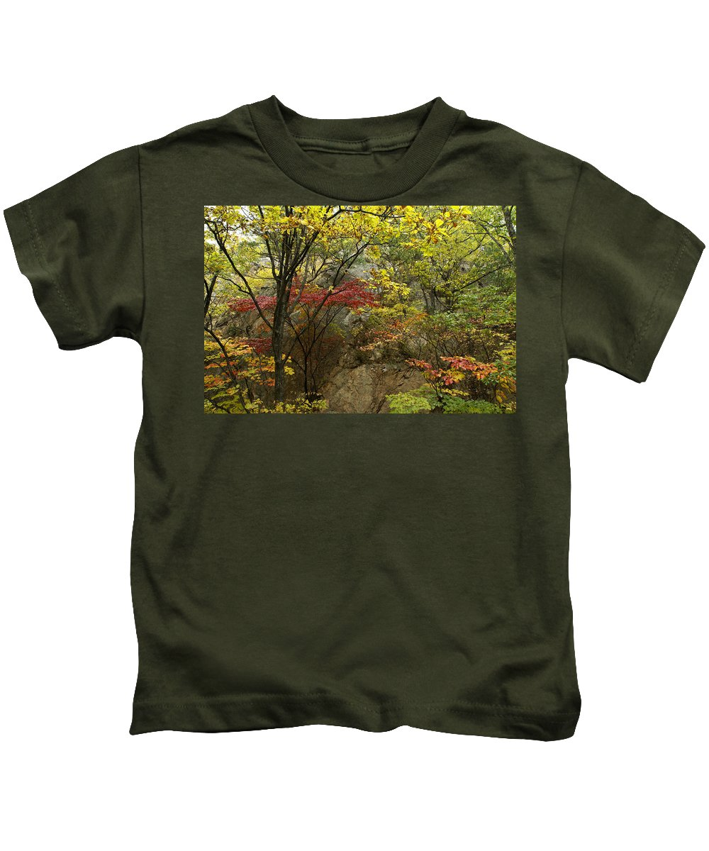 Autumn Kids T-Shirt featuring the photograph Forest In Autumn by Michele Burgess