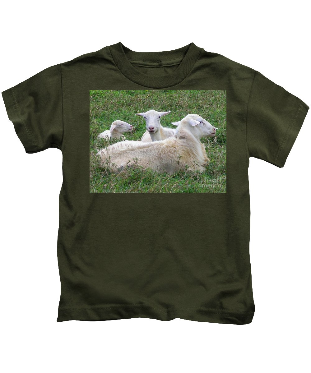 White Animals Kids T-Shirt featuring the photograph Goat Family by Mary Deal
