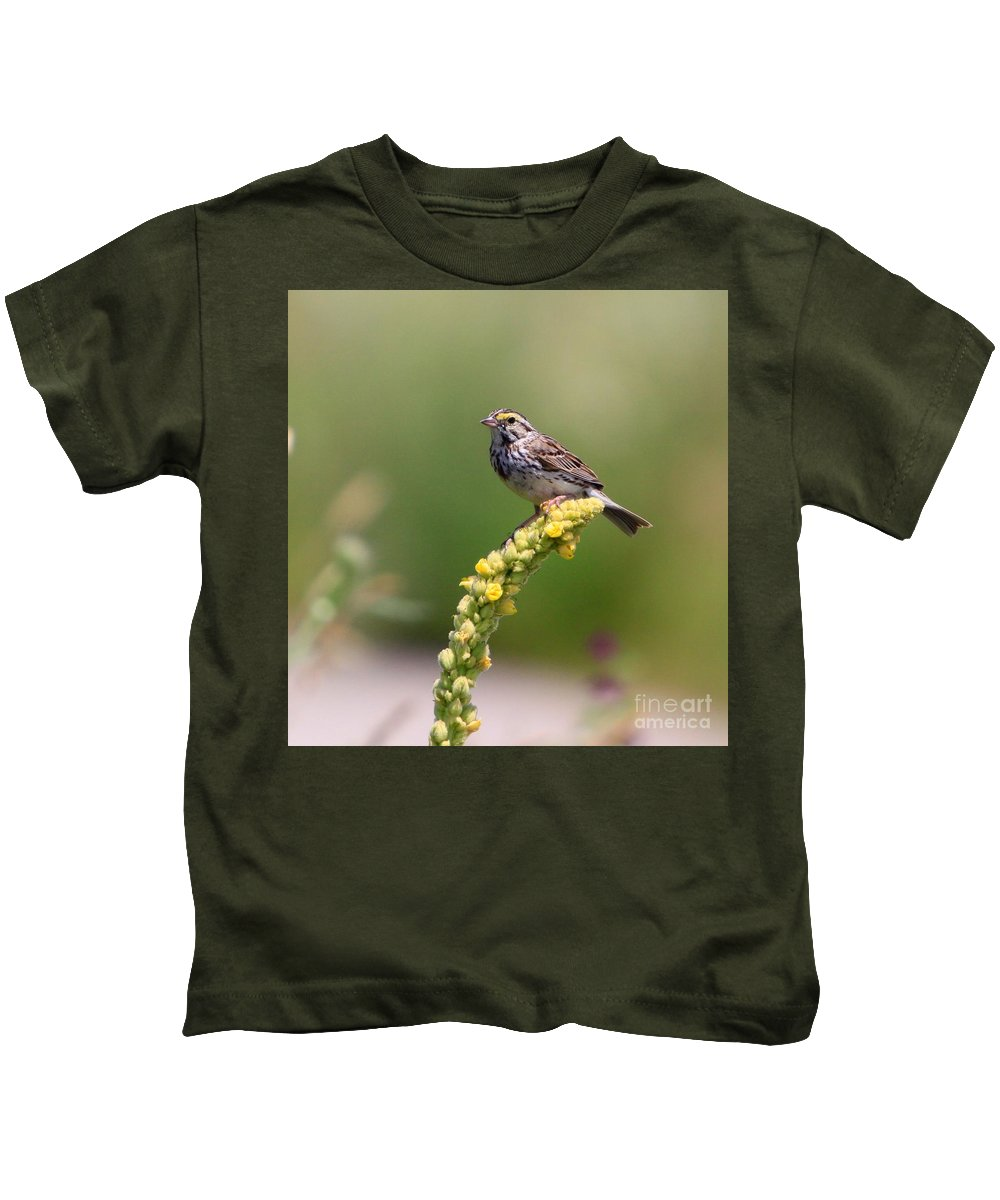 Related Tags: Kids T-Shirt featuring the photograph In The Sun by Robert Pearson