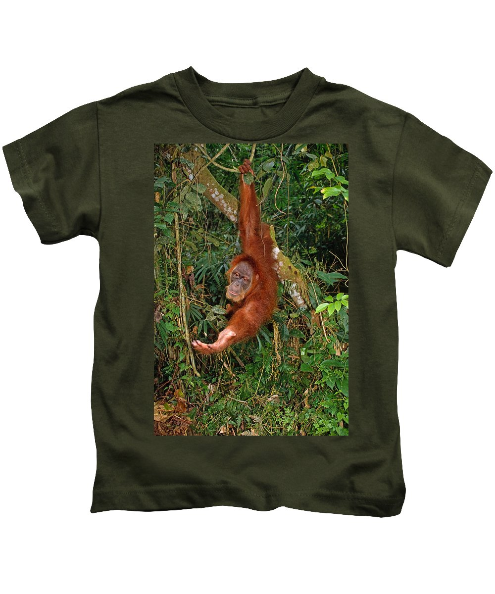 Orangutan Kids T-Shirt featuring the photograph Looking For A Handout by Michele Burgess