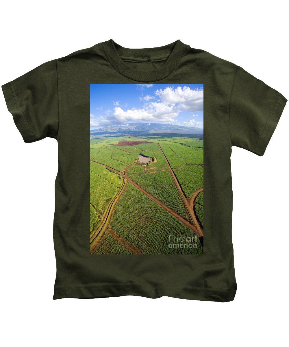 Above Kids T-Shirt featuring the photograph Maui Sugar Cane by Ron Dahlquist - Printscapes