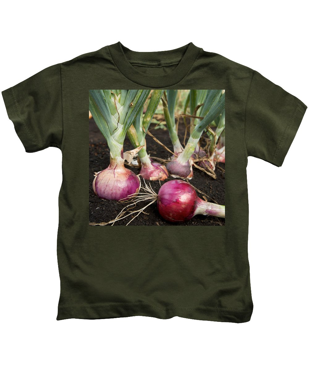 Onion Kids T-Shirt featuring the photograph Red Onions by PhotographyAssociates