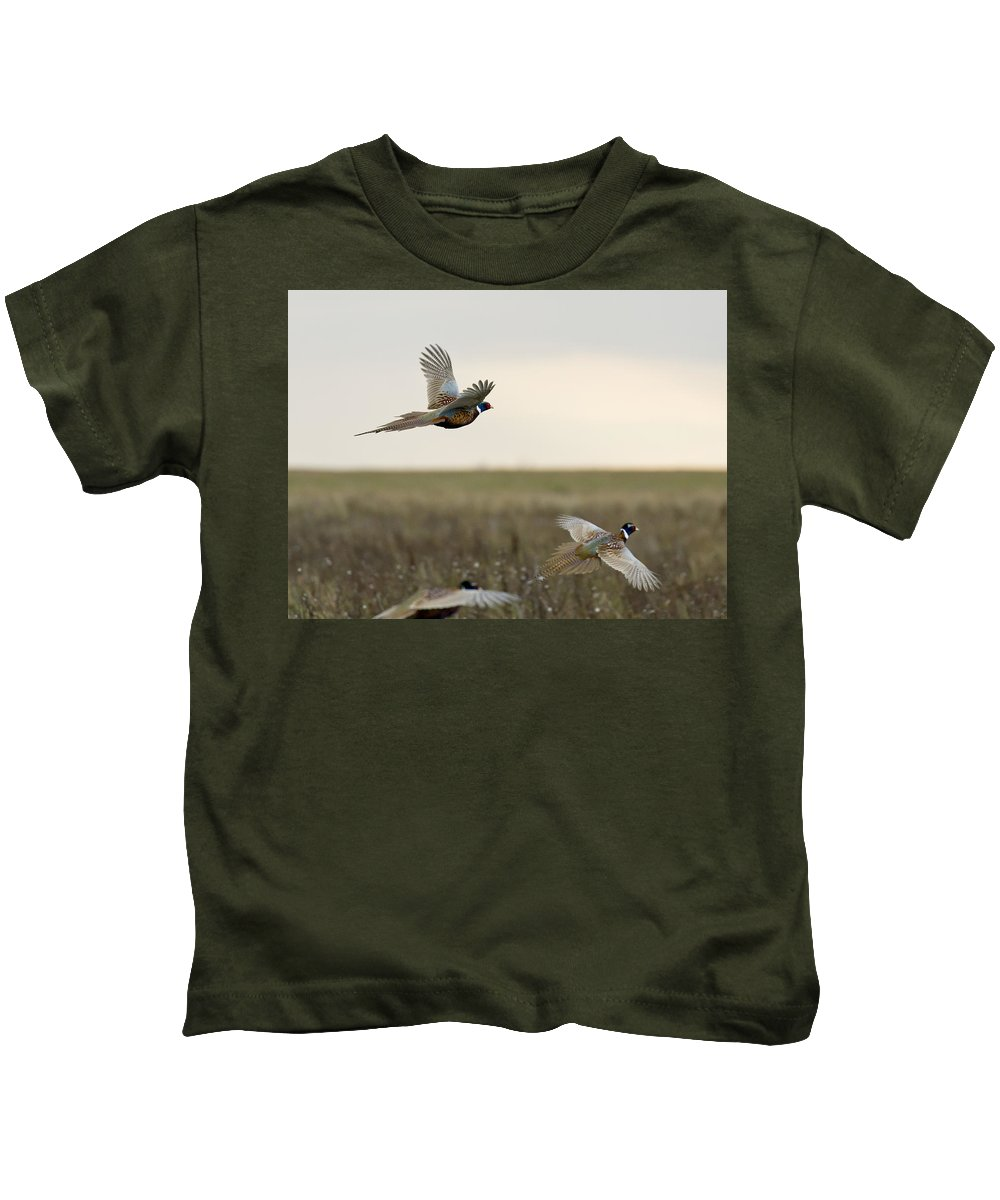 Pheasant Kids T-Shirt featuring the photograph Rooster Pheasants by Steve Oehlenschlager