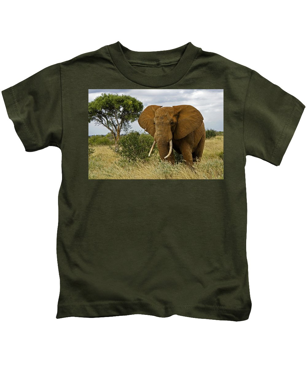 Africa Kids T-Shirt featuring the photograph The Old Bull by Michele Burgess
