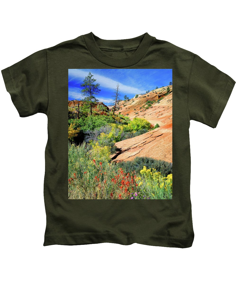 Zion National Park Kids T-Shirt featuring the photograph Zion Slickrock by Frank Houck