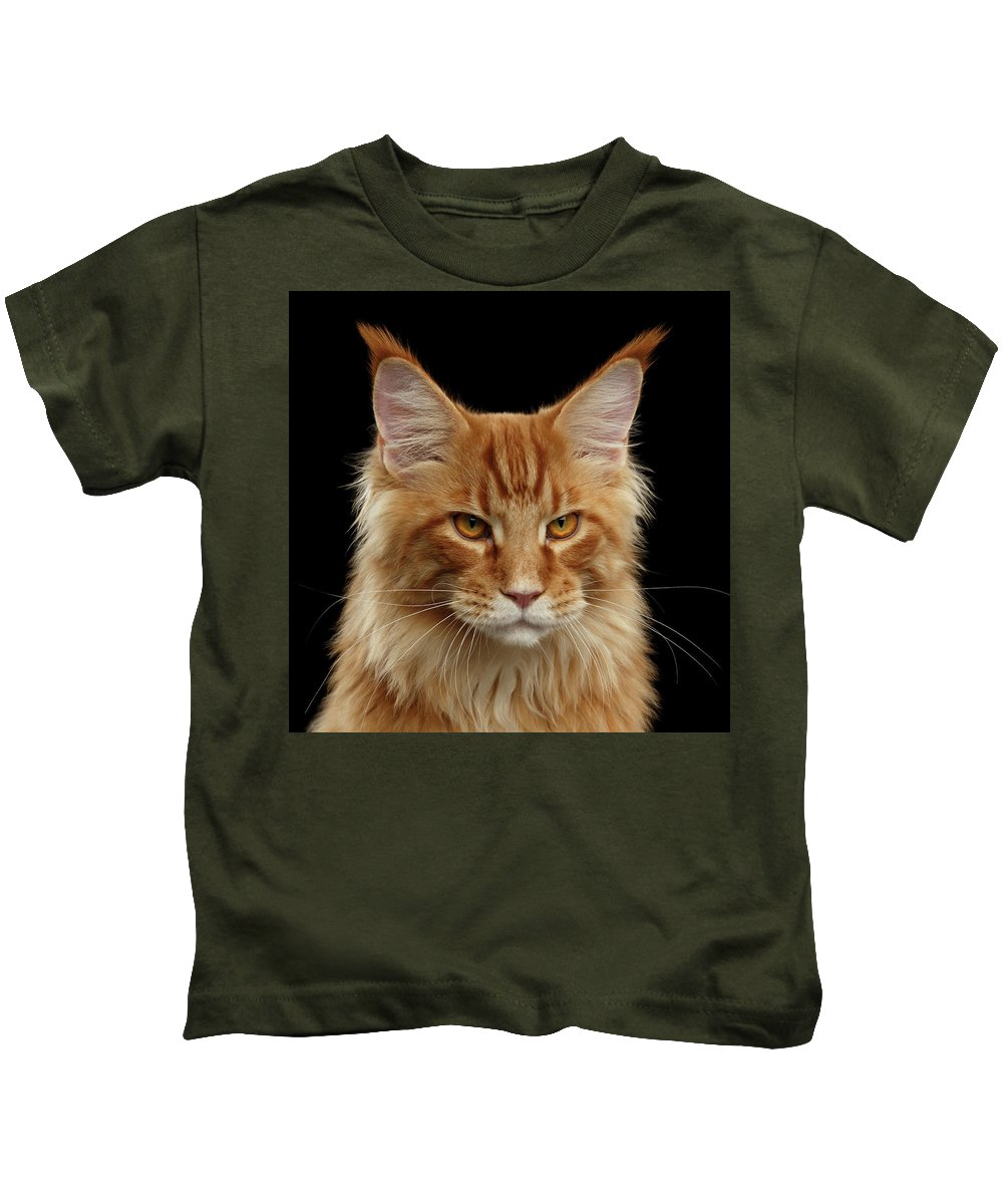 Angry Kids T-Shirt featuring the photograph Angry Ginger Maine Coon Cat Gazing On Black Background by Sergey Taran