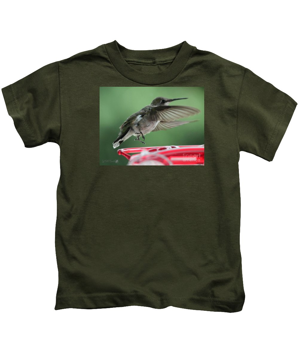 Mccombie Kids T-Shirt featuring the photograph Female Ruby-throated Hummingbird by J McCombie
