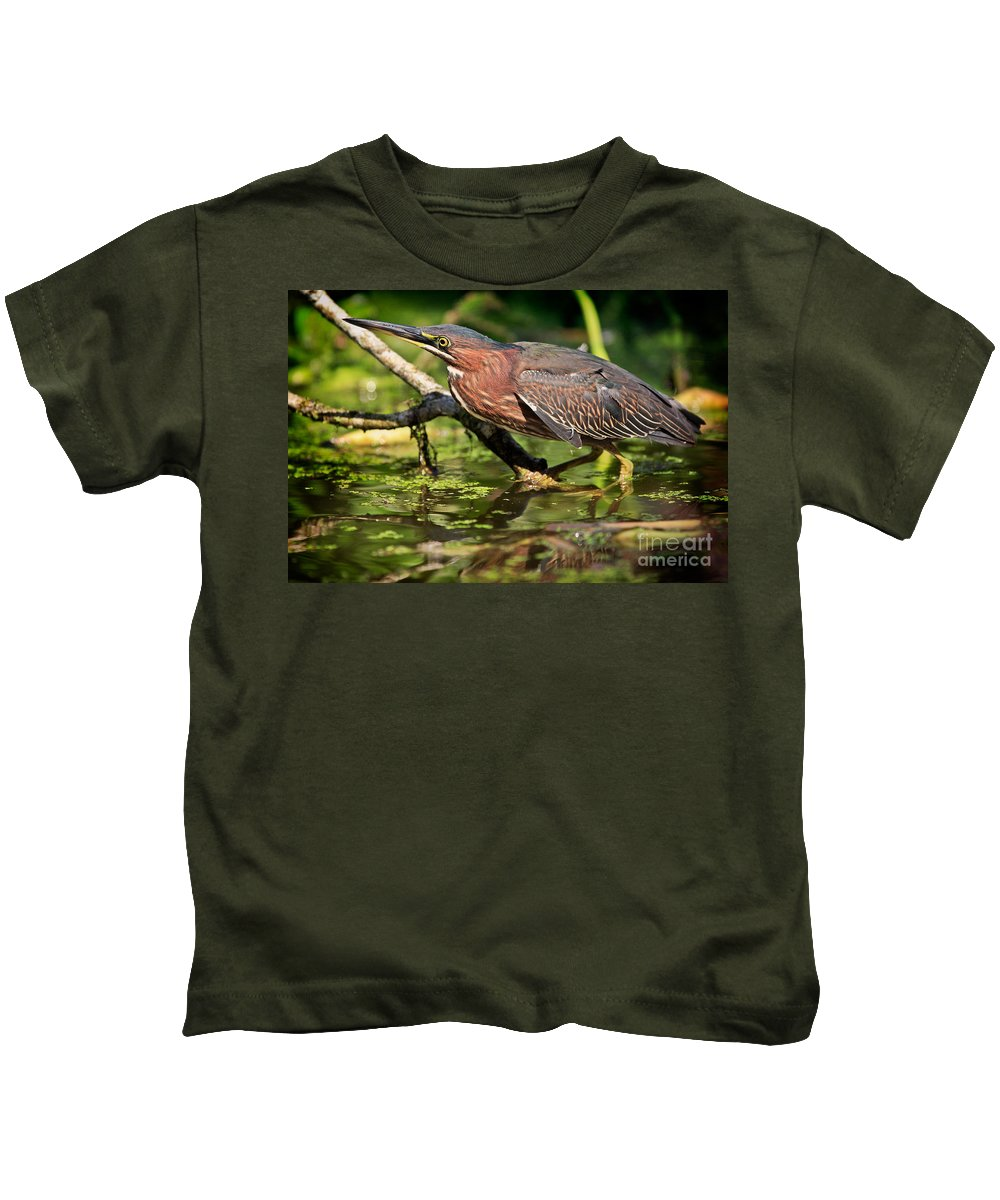 Green Heron Kids T-Shirt featuring the photograph Green Heron by Matt Suess