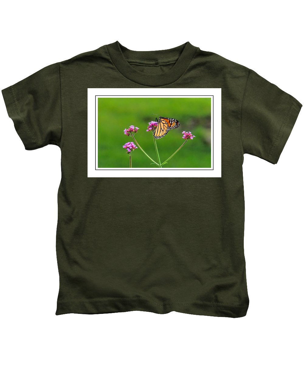 Card Kids T-Shirt featuring the photograph Monarch Butterfly by Alan Hutchins