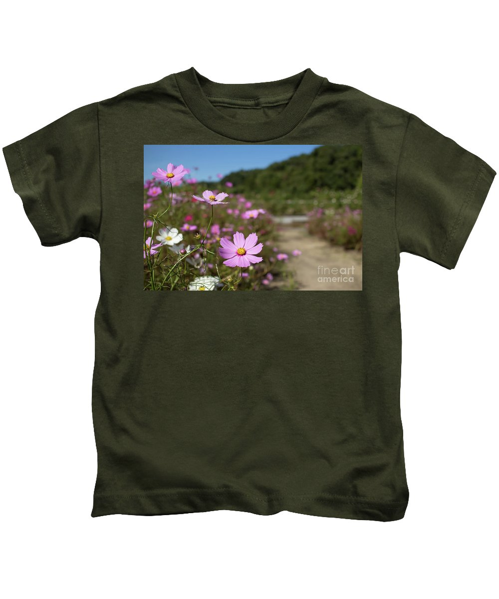 Asia Kids T-Shirt featuring the photograph Sensation Cosmos Bipinnatus Fully Bloomed Colorful Cosmos On M by Eiko Tsuchiya