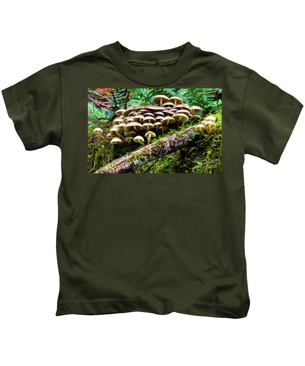 Mushrooms Kids T-Shirt featuring the photograph Mushrooms by Bob Christopher