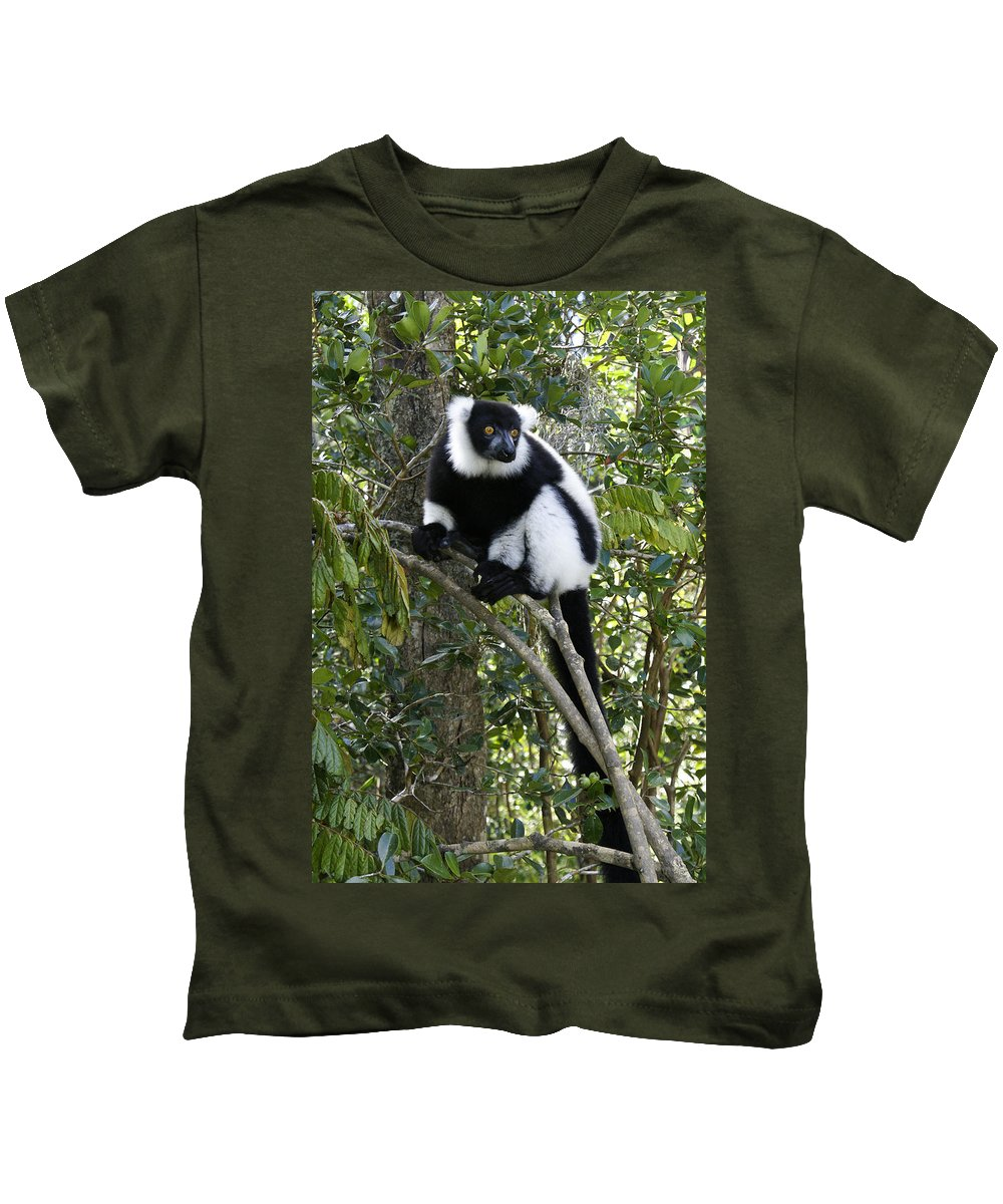 Madagascar Kids T-Shirt featuring the photograph Black And White Ruffed Lemur by Michele Burgess