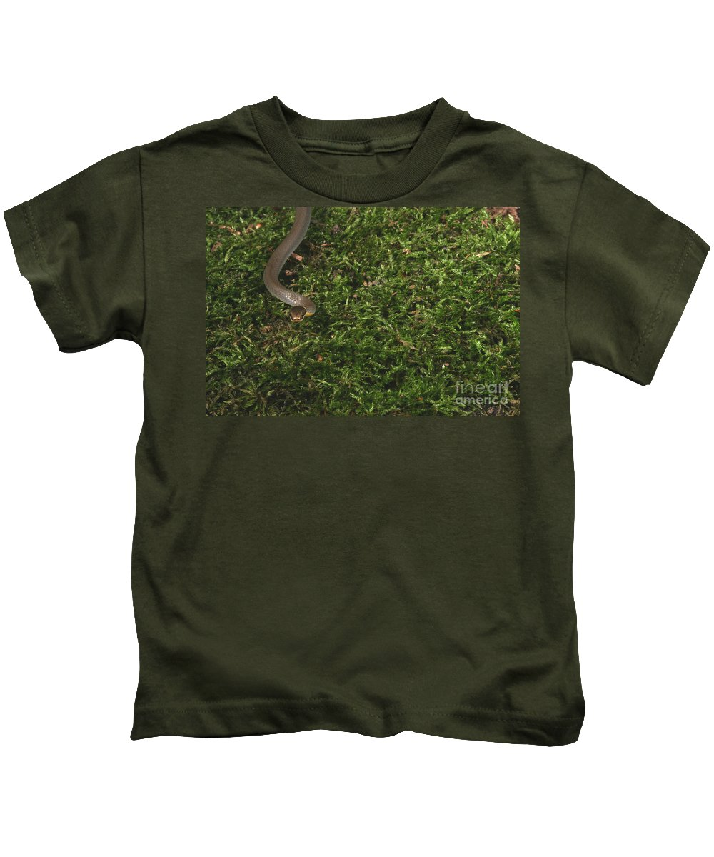 Animal Kids T-Shirt featuring the photograph Northern Ringneck Snake by Ted Kinsman