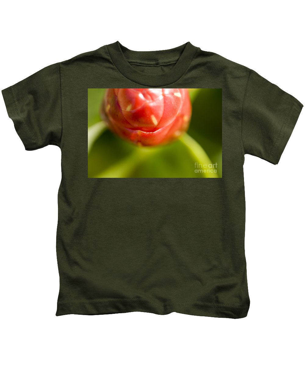 83-pfs0175 Kids T-Shirt featuring the photograph Flower Abstract by Ray Laskowitz - Printscapes