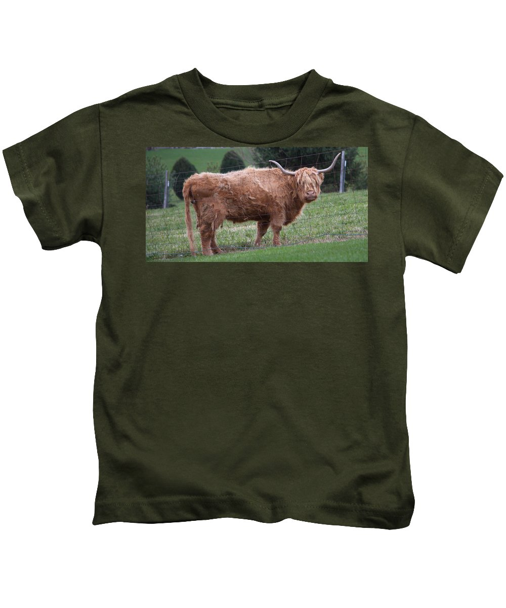Cow Kids T-Shirt featuring the photograph A Bad Hair Day by Russ L Busse