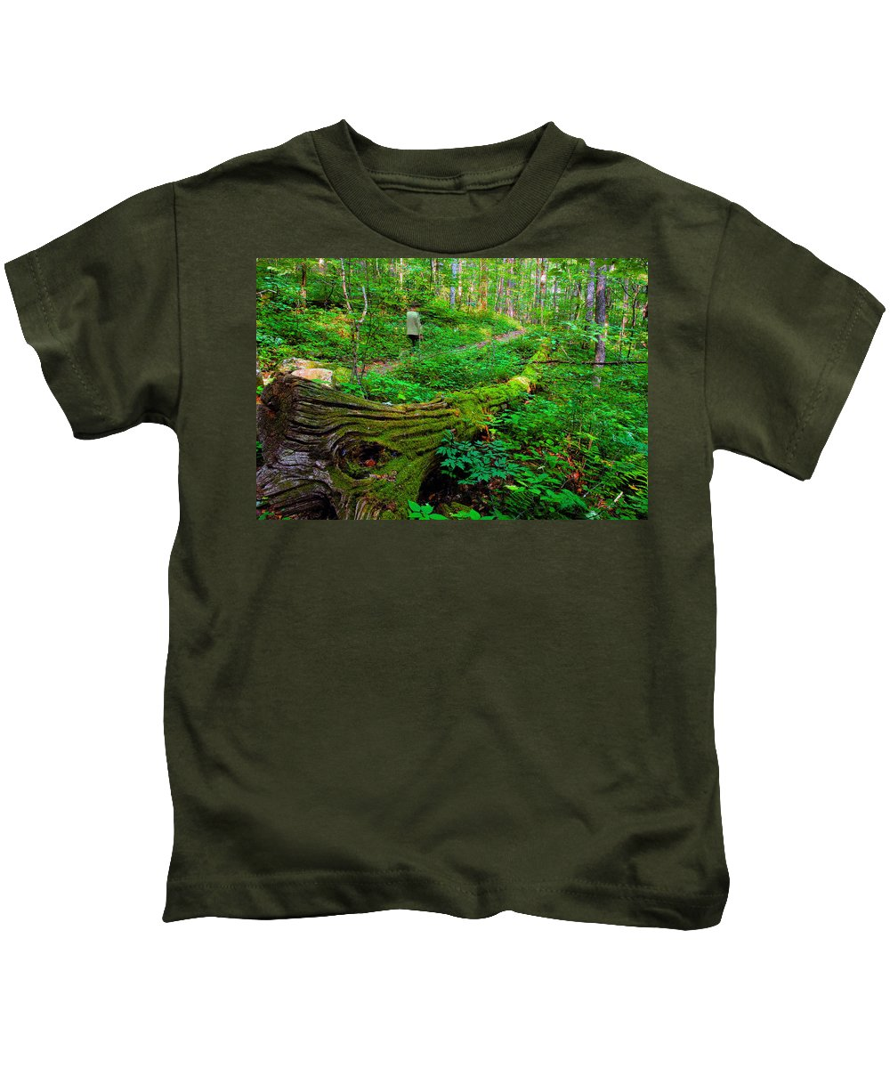 Hiking Kids T-Shirt featuring the painting A Forest Stroll by David Lee Thompson
