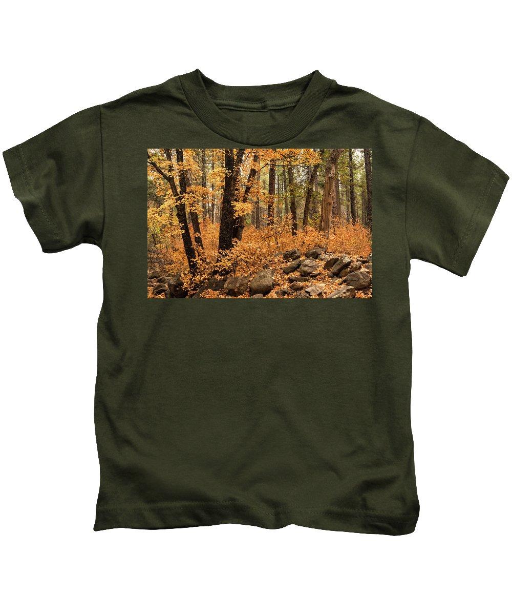 Fall Colors Kids T-Shirt featuring the photograph A Golden Autumn Forest by Saija Lehtonen