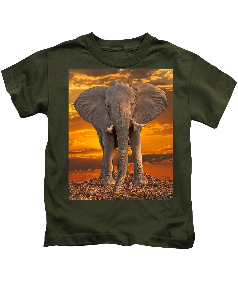 Elephant Kids T-Shirt featuring the photograph African Bull Elephant At Sunset by Larry Linton
