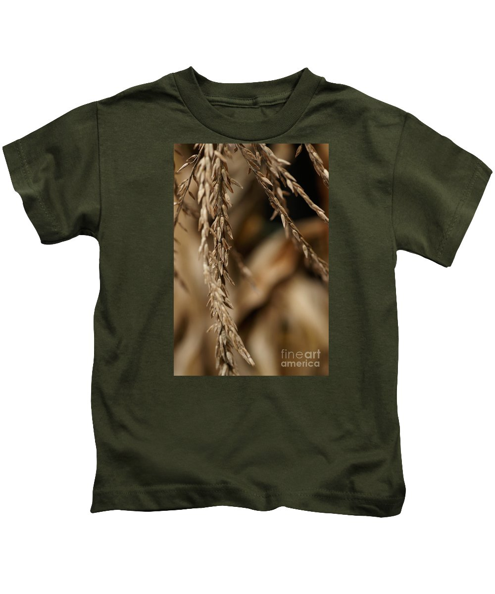 Corn Kids T-Shirt featuring the photograph After The Harvest - 3 by Linda Shafer