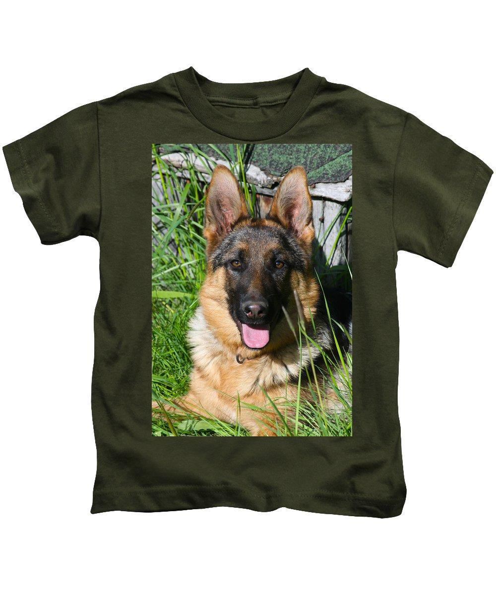 Pup Kids T-Shirt featuring the photograph Alexis Von Nordstern Hof by Karon Melillo DeVega