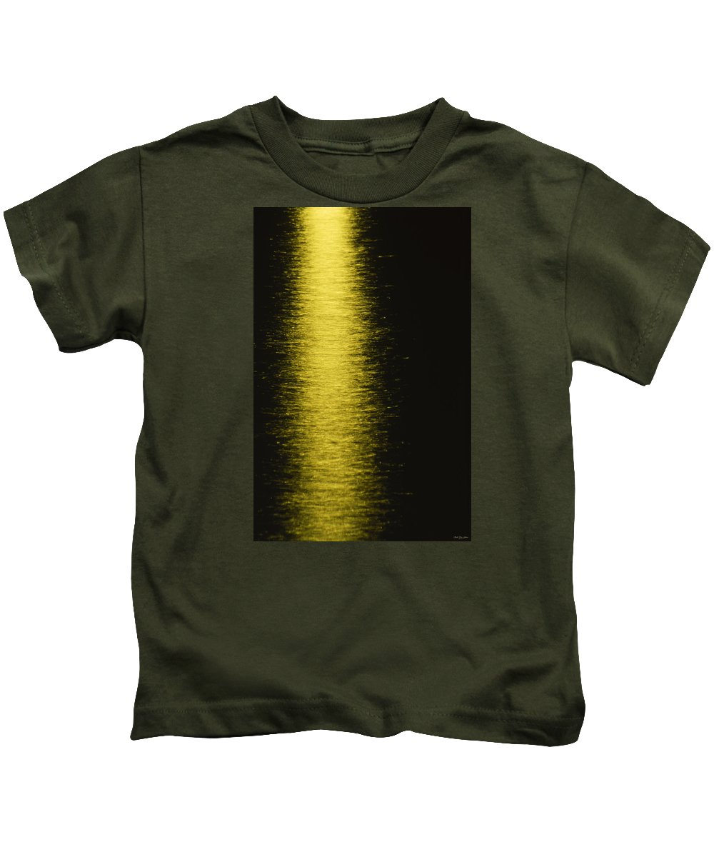 Santa Barabra Pier Kids T-Shirt featuring the photograph Alight by Soli Deo Gloria Wilderness And Wildlife Photography