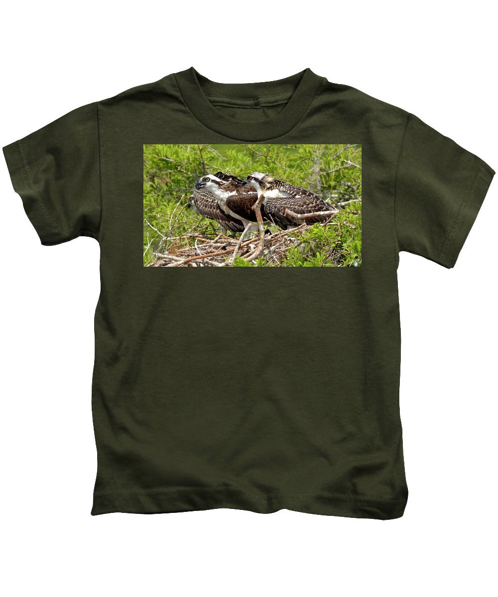 Osprey Kids T-Shirt featuring the photograph Always Watching by Carol Bradley