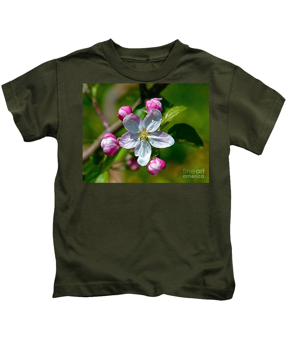Flower Kids T-Shirt featuring the photograph Apple Blossom by Robert Pearson