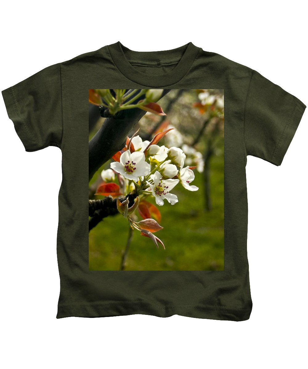 Flowers Kids T-Shirt featuring the photograph Apple Blossoms by Albert Seger