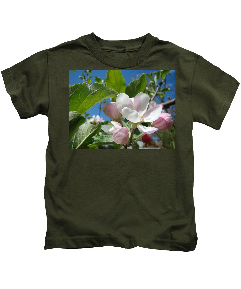 Apple Kids T-Shirt featuring the photograph Apple Blossoms Art Prints Spring Apple Tree Baslee Troutman by Baslee Troutman