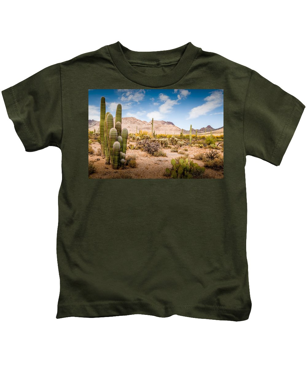 Superstition Kids T-Shirt featuring the photograph Arizona Desert #3 by Jon Manjeot