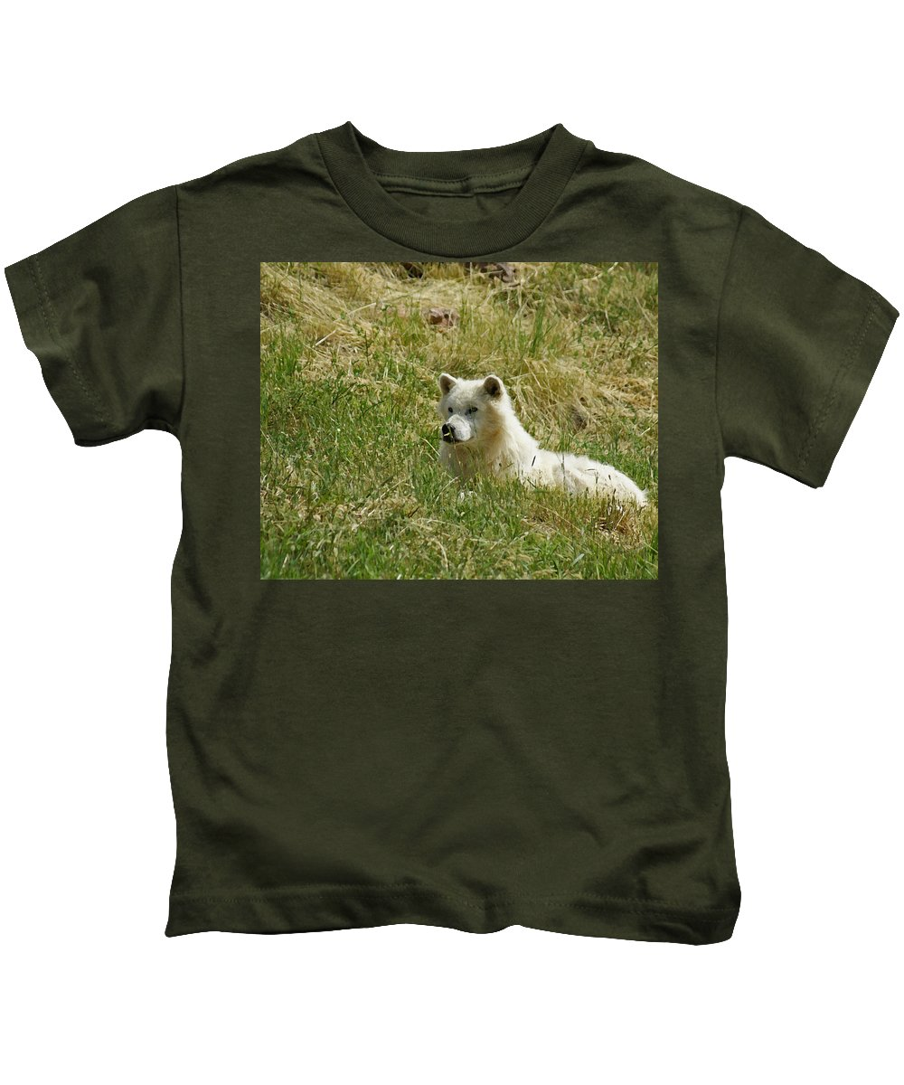 Animals Kids T-Shirt featuring the mixed media Artic Wolf 2 Dry Brushed by Ernie Echols