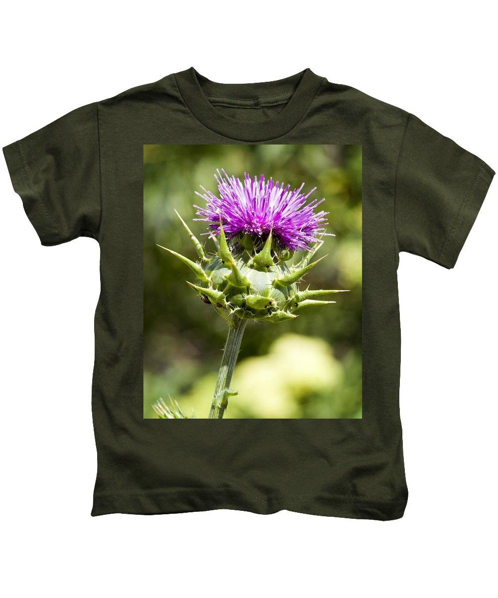 Artichoke Thistle Kids T-Shirt featuring the photograph Artichoke Thistle 3 by Kelley King