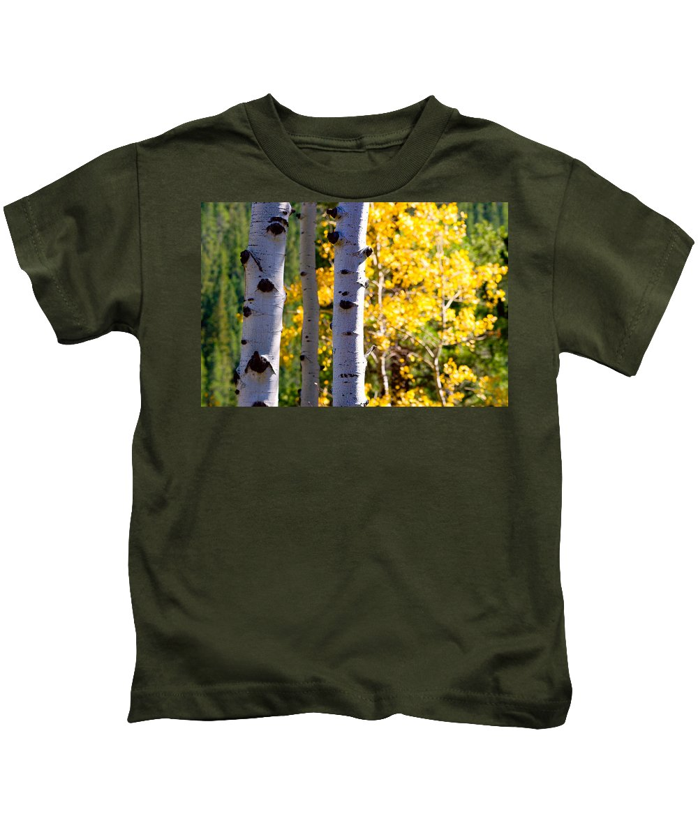 Aspens Kids T-Shirt featuring the photograph Aspen Color by James BO Insogna
