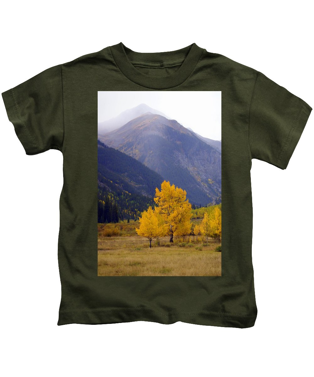 Fall Colors Kids T-Shirt featuring the photograph Aspen Fall 4 by Marty Koch