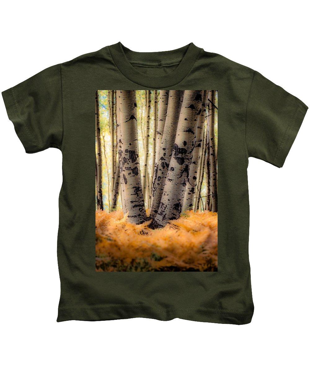 Aspen Kids T-Shirt featuring the photograph Aspen Trees With Ferns by John Brink