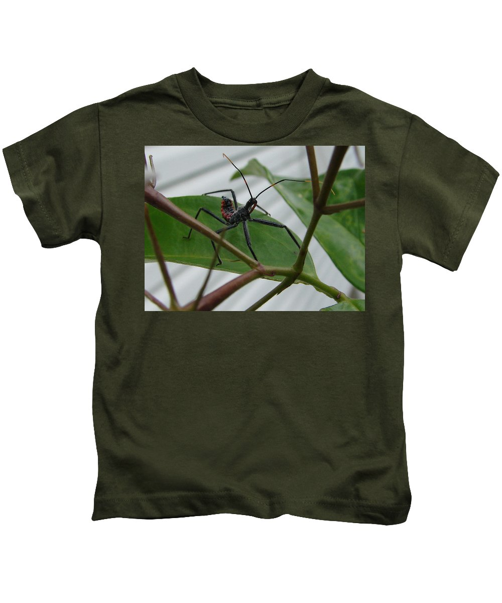 Insect Red Black Green Leaf Kids T-Shirt featuring the photograph Assassin Bug by Luciana Seymour