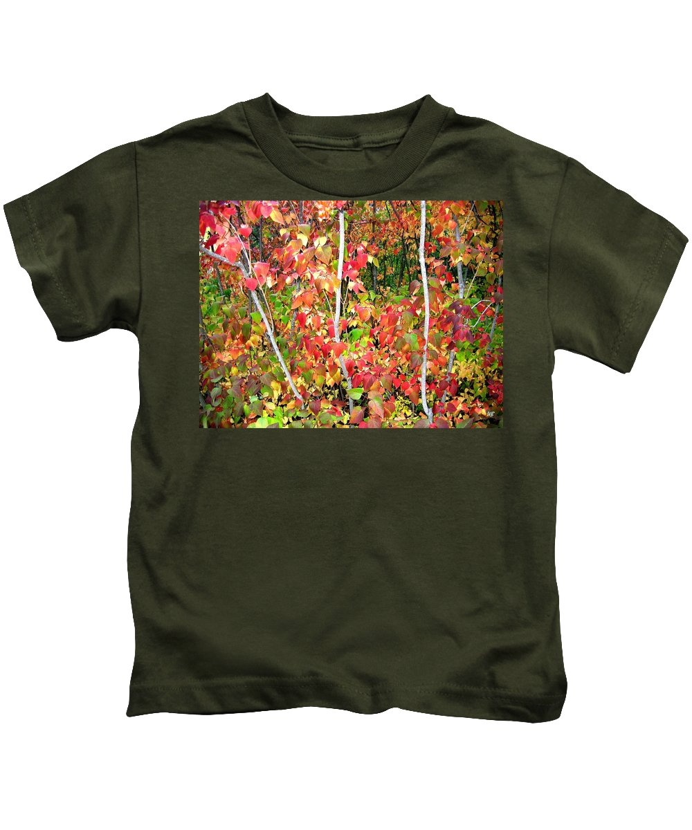 Autumn Kids T-Shirt featuring the photograph Autumn Sanctuary by Will Borden