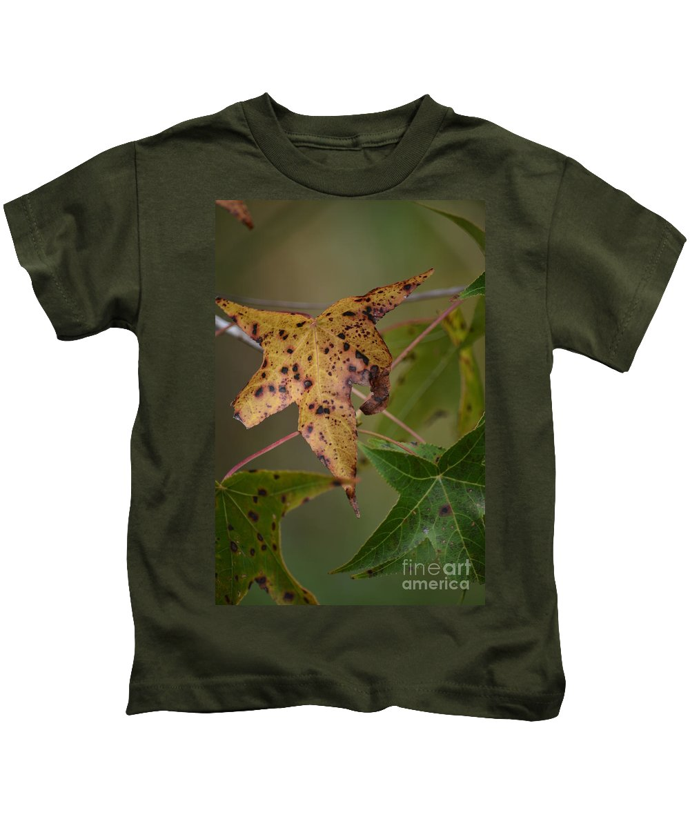 Autumn Spotted Kids T-Shirt featuring the photograph Autumn Spotted by Maria Urso