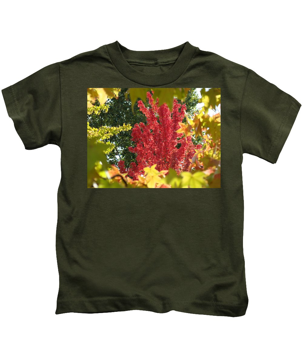 Autumn Kids T-Shirt featuring the photograph Autumn Trees Landscape Art Prints Canvas Fall Leaves Baslee Troutman by Baslee Troutman