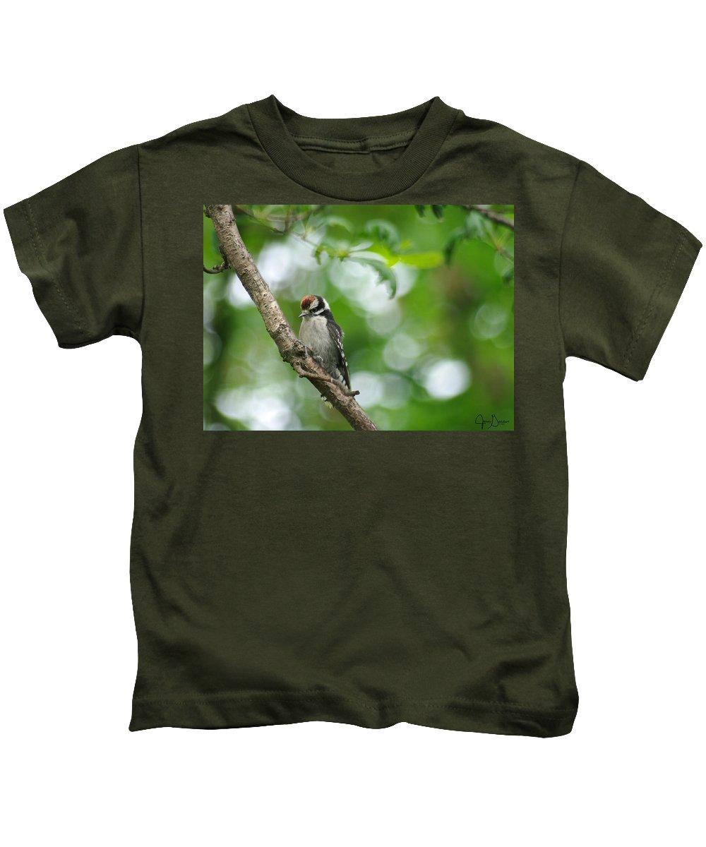 \jenny Gandert\ Baby Downy Woodpecker \downy Woodpecker\ Juvenile Bird Juvenile Woodpecker Oak Limb Feed Kids T-Shirt featuring the photograph Baby Downy by Jenny Gandert