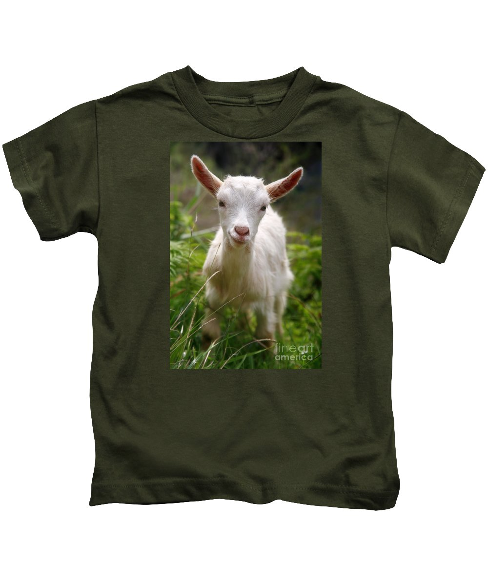 Animals Kids T-Shirt featuring the photograph Baby Goat by Gaspar Avila