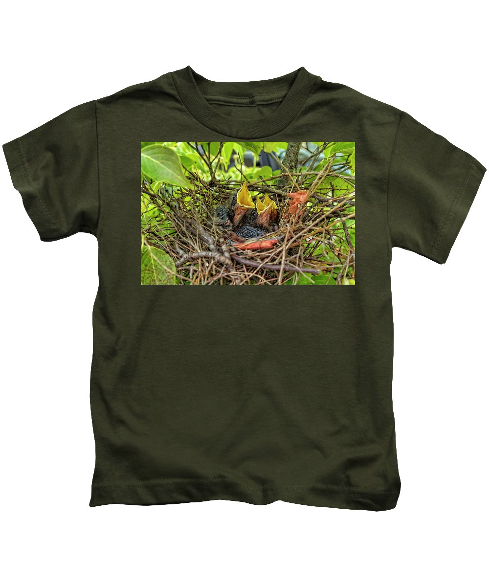 Mockingbird Kids T-Shirt featuring the photograph Baby Mockingbirds by Kay Brewer